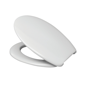 Standard White Toilet Seat & Cover